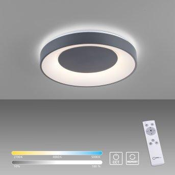 Leuchten Direkt ANIKA Deckenleuchte LED Schwarz, 1-flammig, Fernbedienung