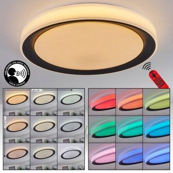 Gladstone Deckenleuchte LED Schwarz, Weiß, 1-flammig, Fernbedienung