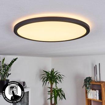 Boyero Deckenpanel LED Schwarz, 1-flammig