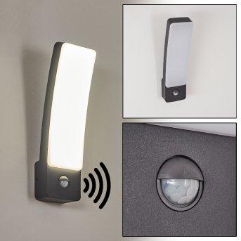 Maseru Außenwandleuchte LED Anthrazit, 1-flammig, Bewegungsmelder