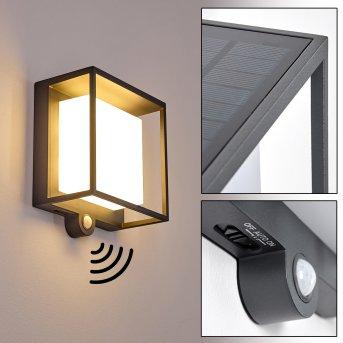 Lansing Solar-Außenwandleuchte LED Anthrazit, 1-flammig, Bewegungsmelder