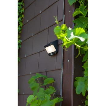 Lutec TRY Solar-Außenwandleuchte LED Anthrazit, 1-flammig, Bewegungsmelder