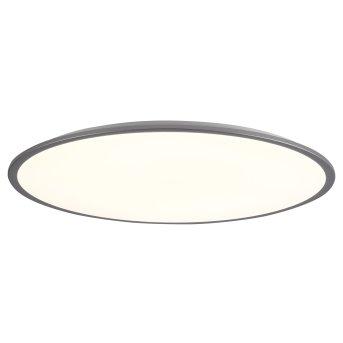 Brilliant Jamil Deckenpanel LED Silber, 1-flammig, Fernbedienung