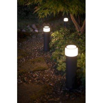 Philips Hue Calla Sockelleuchte Basis-Set LED Schwarz, 1-flammig, Farbwechsler
