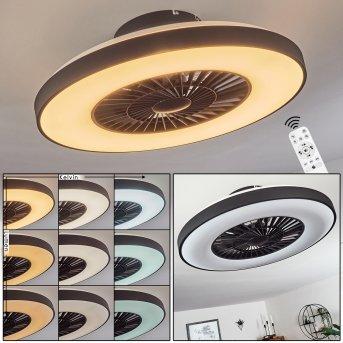 Qualiano Deckenventilator LED Schwarz, Weiß, 1-flammig, Fernbedienung