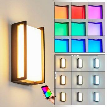 Skove Außenwandleuchte LED Anthrazit, 1-flammig, Farbwechsler