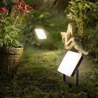 Paul Neuhaus ROMY Gartenstrahler LED Schwarz, 1-flammig