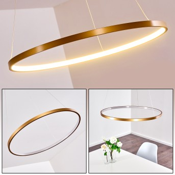 Canisteo Hängeleuchte LED Gold, 1-flammig