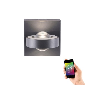 Paul Neuhaus Q-MIA Wandleuchte LED Anthrazit, 2-flammig, Fernbedienung
