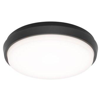LCD TYP 5067 Außendeckenleuchte LED Schwarz, 1-flammig